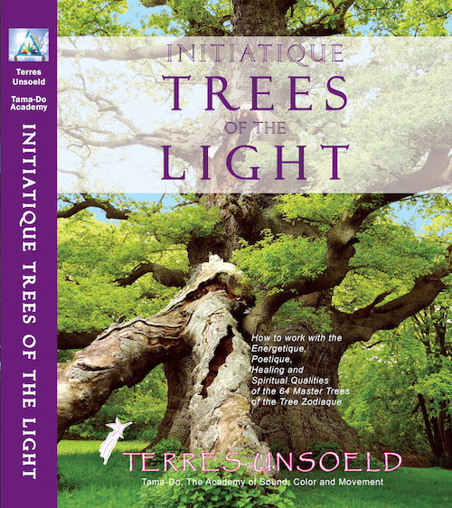 Initiatique Trees of the Light Cover