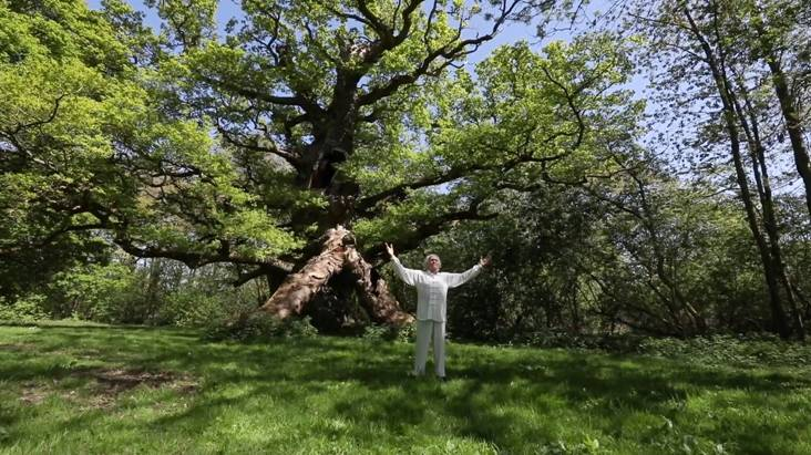 Fabien Maman practices his Tao Yin Fa Series II with Master Oak